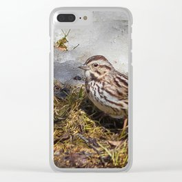 Spring melt Clear iPhone Case