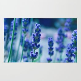 A Touch of blue - Lavender #1 Rug