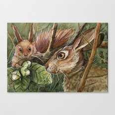 Bunny, squirrel and nuts A068 Canvas Print