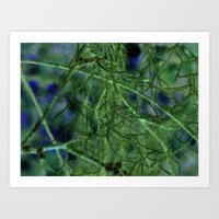 Nature's Lace Curtain Art Print