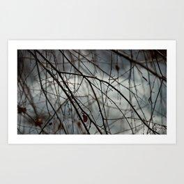 Poland spring Art Print