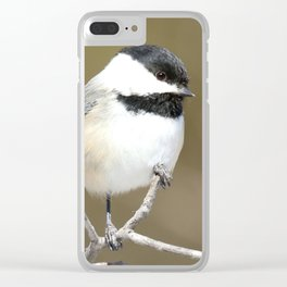 The finer points Clear iPhone Case