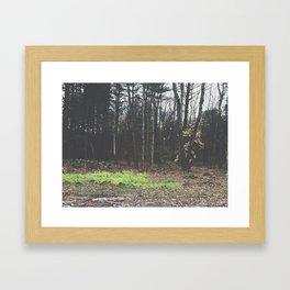 Autumn 15 Framed Art Print