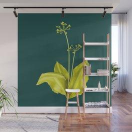 Wild Garlic Plant Botanical Art In Green Wall Mural