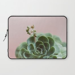Echeveria On Pink #6 Laptop Sleeve