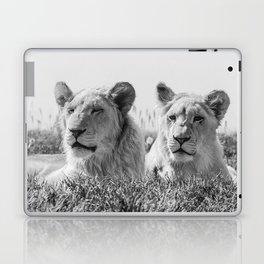 Lion Photography | Cubs | Twins | Love | Animal Laptop & iPad Skin