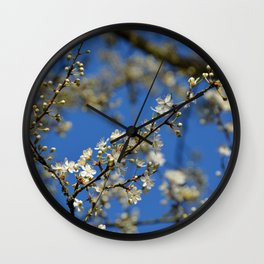 Spring is coming! Wall Clock