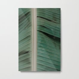 spine Metal Print
