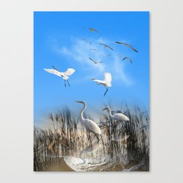 White Egrets in a Morning 1 Canvas Print
