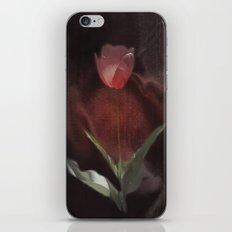 silk tulip iPhone & iPod Skin
