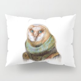 Animals - Funny Owl Painting Pillow Sham