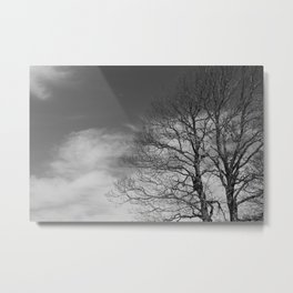 Mt. Sirino - Trees Metal Print