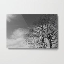 Mt. Sirino - Trees Metal Print