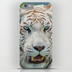THE BEAUTY OF WHITE TIGERS Slim Case iPhone 6 Plus