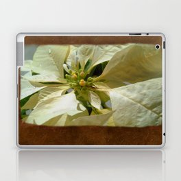 Pale Yellow Poinsettia 1 Blank P3F0 Laptop & iPad Skin