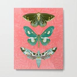 Lepidoptery No. 5 by Andrea Lauren  Metal Print