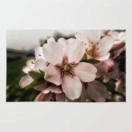 Flor de Almendro Rug