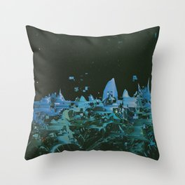 TZTR Throw Pillow