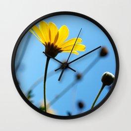 Morning Sunlight Wall Clock