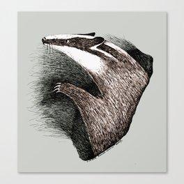 Badger Medicine Canvas Print