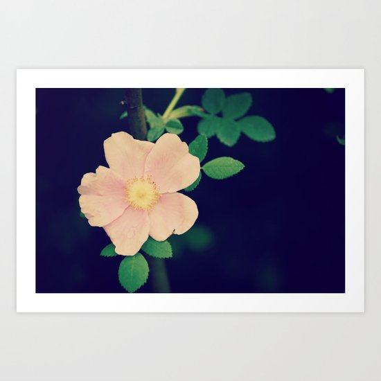Perfectly Pretty Art Print