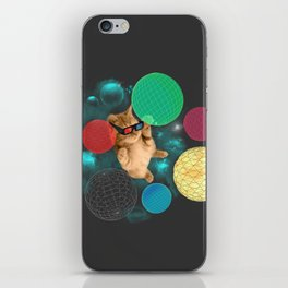 A PLAYFUL DAY iPhone Skin