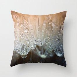 Crystal Clear.... Throw Pillow