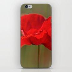 Summer Love.... iPhone & iPod Skin
