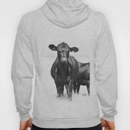 Cattle Country Photograph Hoody