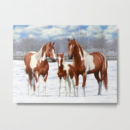 Chestnut Pinto Paint Horses In Snow Metal Print