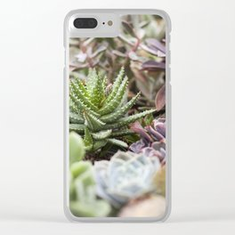 Haworthia Clear iPhone Case