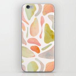 islands II iPhone Skin