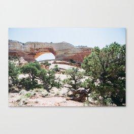 Wilson's Arch, UT Canvas Print