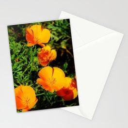 Golden Poppy Stationery Cards