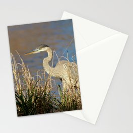 Heron Scans For Prey Stationery Cards