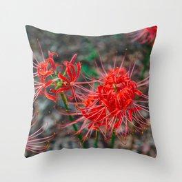 Charleston Hurricane Lily IV Throw Pillow
