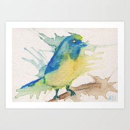 Euphonia bird in watercolor pencils Art Print