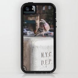 NYC Pigeon iPhone Case