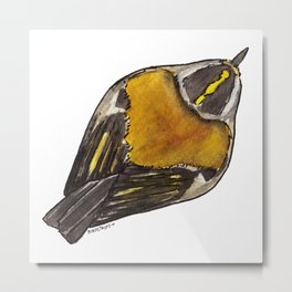 Bird no. 447: Bird's Eye View (of Bird) Metal Print