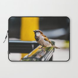 Summer Sidewalk Nature Bird. Photograph Laptop Sleeve