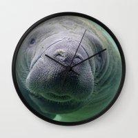 manatee Wall Clocks featuring Manatee by Heidi Ingram