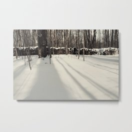 A Theif Comes Metal Print