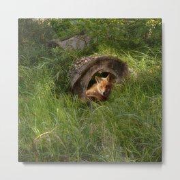 Fox in a Log Metal Print