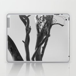 Now You See The Tree Laptop & iPad Skin