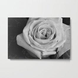 Only a Rose Metal Print