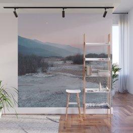 Frozen morning Wall Mural