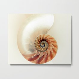 Shell of life Metal Print
