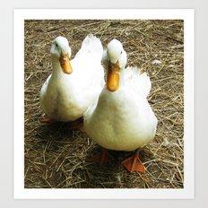 Quack Quack Art Print