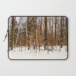 Maple Beech Forest in the Winter Laptop Sleeve