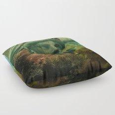 East Coast Sightseeing Floor Pillow
